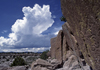 Chama River Canyon, New Mexico, USA: thunder clouds, ponderosa pines and petroglyphs - Georgia O'Keefe Country - photo by C.Lovell