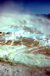 Yellowstone NP, Wyoming, USA: Pamukkale in the new world - Mammoth Hot Springs - Minerva Terrace - fumes - photo by J.Fekete