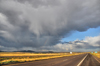 I-40, Arizona, USA: a storm advances on Interstate 40 - photo by M.Torres