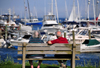 Rockland, Maine, New England, USA: elderly couple on a bench, enjoying the ocean and the boats - photo by M.Torres