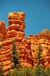 Dixie National Forest, Utah, USA: Red Canyon - red sandstone formations - photo by M.Torres