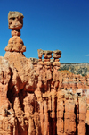 Bryce Canyon National Park, Utah, USA: Sunset Point - Thor's Hammer hoodoo stands above neighbouring pinnacles - photo by M.Torres