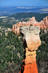 Bryce Canyon National Park, Utah, USA: Agua Canyon - hoodoo called 'The Hunter' - photo by M.Torres
