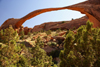 Arches National Park, Grand County, Utah, USA: Landscape Arch still defies gravity - the the longest arch in the park - Devil's Garden Trail - photo by A.Ferrari