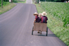 Pennsylvania, USA: Amish vehicle - junior version - photo by J.Kaman