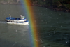 Niagara Falls, New York, USA: rainbow and Maid of the Mist VII tour boat - seagulls and Niagara river - photo by M.Torres