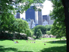 Manhattan (New York): Central Park - afternoon on the lawn (photo by Llonaid)