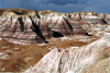 USA - Cocoa Mountains - Petrified Forest NP (Arizona) - Photo by G.Friedman