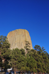 Devils Tower National Monument, Wyoming: surrounded by a Ponderosa Pine forest - photo by M.Torres