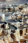 Yellowstone NP, Wyoming, USA: Mammoth Hot Springs - Minerva Terrace - travertine terraces - Terrace Mountain - the largest carbonate-depositing spring in the world - Pamukkale like landscape - Unesco world heritage site - photo by J.Fekete