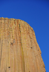 Devils Tower National Monument, Wyoming: flat-top stump of stone - cylindrical and fluted - photo by M.Torres