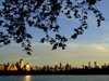 Manhattan (New York City): sunset- Jacqueline Kennedy Onassis Reservoir at Central Park - photo by M.Bergsma