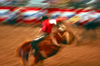 USA - Phoenix (Arizona): rodeo - saddle bronco riding - west - cowboy - blur - horse in motion - photo by J.Fekete