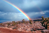 Nevada, USA: rainbow in the desert - photo by J.Fekete