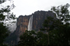 173 Venezuela - Bolivar - Canaima National Park - Salto Angel seen from the Ratoncito campsite - Angel Falls - photo by A. Ferrari