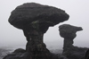 52 Venezuela - Bolivar - Canaima NP - Mushroom-like rock formation at the top of Roraima - photo by A. Ferrari