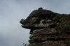 66 Venezuela - Bolivar - Canaima NP - Rock formation with a big nose at the top of Roraima - photo by A. Ferrari