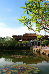 Hue - Vietnam: Royal Citadel - causeway and water-lillies on the moat - photo by Tran Thai