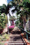 US Virgin Islands - Saint Thomas: Charlotte Amalie - the steps, off Kongens Gade (photo by M.Torres)