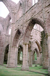 Wales - Monmouthshire, Gwent region: ruins of Tintern Abbey - founded by Walter de Clare, Lord of Chepstow - Cistercian order (photographer: R.Eime)