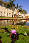 Victoria Falls, Matabeleland North province, Zimbabwe: Victoria Falls Hotel - waterlily pond - photo by R.Eime