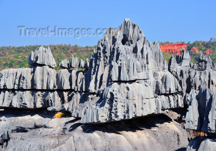 madagascar308: Tsingy de Bemaraha National Park, Mahajanga province, Madagascar: sharp limestone pinnacles - karst formation - UNESCO World Heritage Site - photo by M.Torres - (c) Travel-Images.com - Stock Photography agency - Image Bank